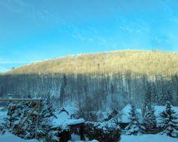 4-9Steinberg_Winter